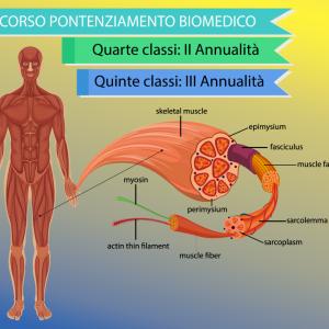 """Potenziamento """" Biologia Con Curvatura Biomedica"""" – II e III annualità."""